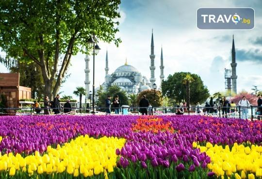 Екскурзия за Фестивала на лалето в Истанбул! 2 нощувки със закуски в хотел Qua 5*, транспорт, посещение на мол в Истанбул и програма в Одрин - Снимка 1