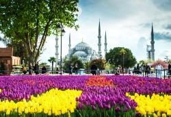 Ранни записвания за Фестивала на лалето в Истанбул! 2 нощувки със закуски в хотел Qua 5*, транспорт, посещение на мол в Истанбул и програма в Одрин - Снимка