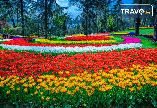 Екскурзия за Фестивала на лалето в Истанбул с АБВ Травелс! 2 нощувки със закуски, транспорт, програма в Истанбул и посещение на Одрин! - Снимка 1