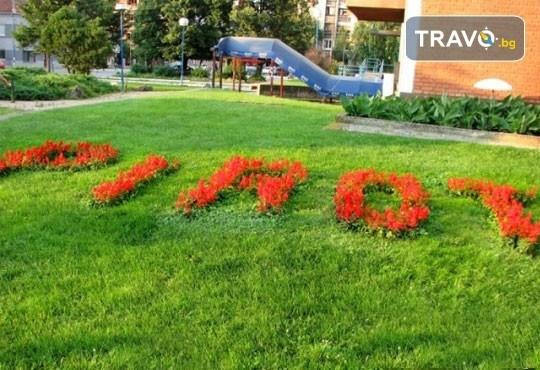 Екскурзия до Пирот и фестивала на пеглената колбасица на 25.01.! Транспорт и екскурзовод от Еко Тур! - Снимка 4