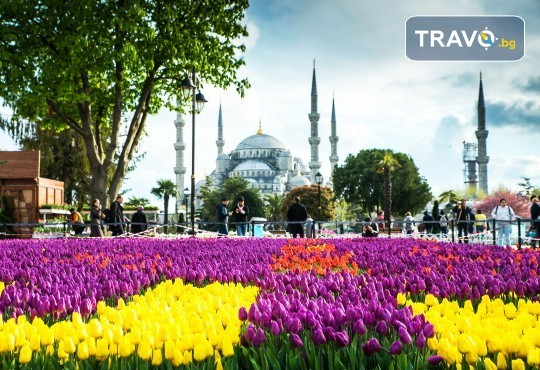 Фестивал на лалето в Истанбул през април! 2 нощувки и закуски в хотел 4*, транспорт и посещение на Одрин - Снимка 4