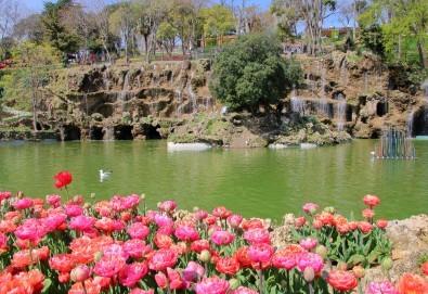 Ранни записвания за прелестния Фестивал на лалето в Истанбул през април! 2 нощувки и закуски в хотел 4*, транспорт и посещение на Одрин - Снимка
