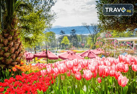 Приказен Фестивал на лалето в Истанбул през пролетта! 2 нощувки със закуски, транспорт и посещение на Одрин - Снимка 3