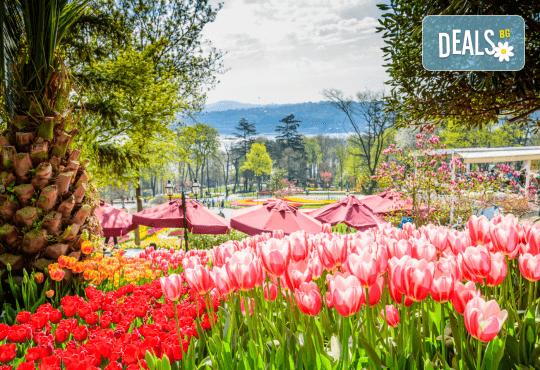 Посетете прелестния Фестивал на лалето през пролетта в Истанбул! 3 нощувки със закуски в хотел 3*, транспорт и посещение на Одрин - Снимка 6