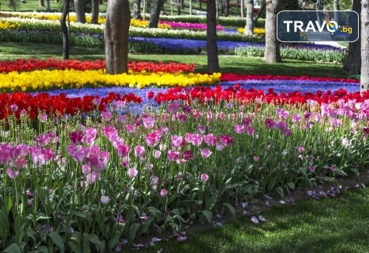 Посетете прелестния Фестивал на лалето през пролетта в Истанбул! 3 нощувки със закуски в хотел 3*, транспорт и посещение на Одрин - Снимка 2