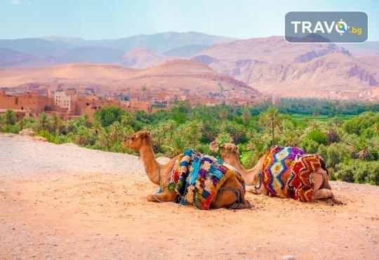 Екскурзия до Мароко с България Травъл! Самолетен билет, 6 нощувки със закуски и вечери, трансфери и туристически програми в Маракеш, Казабланка, Фес, Шефшауен,Танжер! - Снимка 6