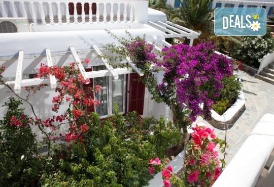 Почивка на остров Миконос - перлата на Цикладите! 4 нощувки със закуски, самолетен билет, салонен багаж и трансфер - Снимка 11