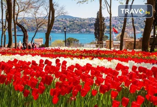 Посетете прелестния Фестивал на лалето в Истанбул с Рикотур! 2 нощувки със закуски в хотел 3*, транспорт и водач - Снимка 1