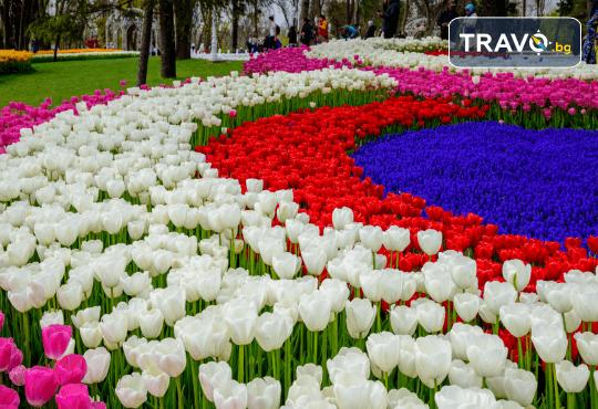 Посетете прелестния Фестивал на лалето в Истанбул с Рикотур! 2 нощувки със закуски в хотел 3*, транспорт и водач - Снимка 2