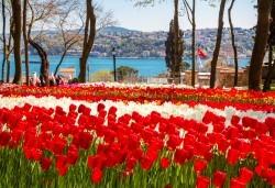 Посетете прелестния Фестивал на лалето в Истанбул с Рикотур! 2 нощувки със закуски в хотел 3*, транспорт и водач - Снимка