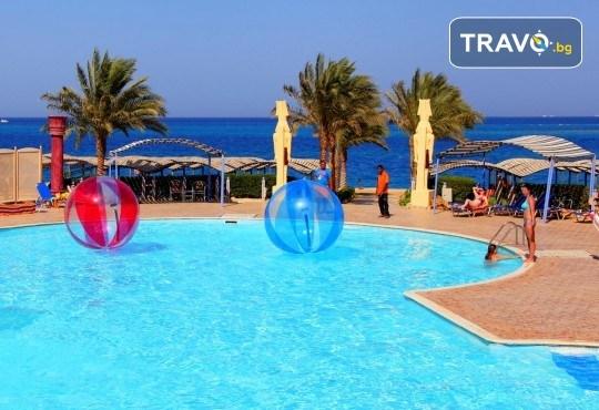 Почивка в Египет! 7 нощувки All Inclusive в Sphinx Aqua Park Beach Resort 4*, Хургада, самолетен билет с директен чартърен полет и трансфери - Снимка 2
