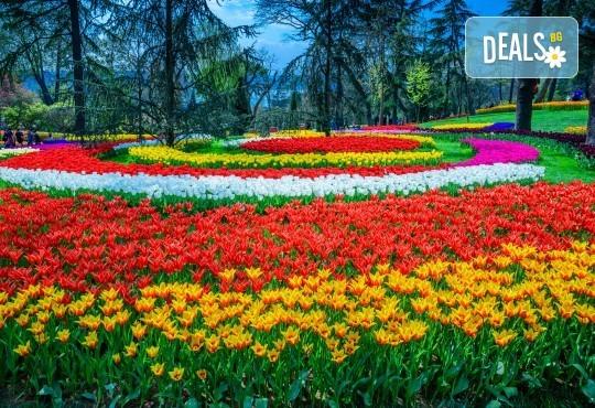 Супер цена за Фестивал на лалето през пролетта в Истанбул! 2 нощувки със закуски в Art Hotel 3*, транспорт и посещение на Одрин - Снимка 2