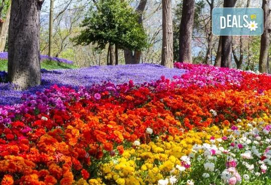 Супер цена за Фестивал на лалето през пролетта в Истанбул! 2 нощувки със закуски в Art Hotel 3*, транспорт и посещение на Одрин - Снимка 4