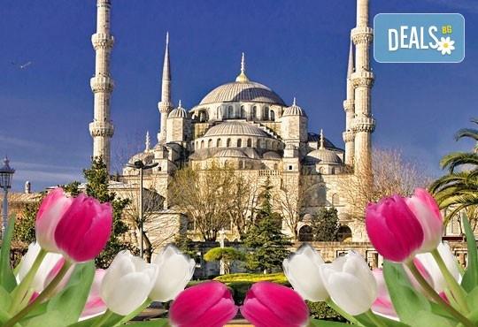Ранни записвания за Фестивал на лалето в Истанбул! 3 нощувки със закуски, транспорт и бонус: посещение на Одрин - Снимка 1