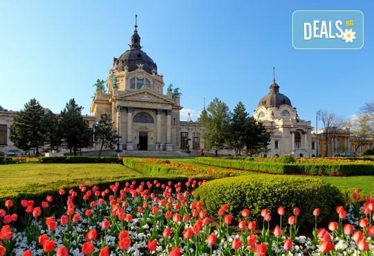 Пролетна приказка в Унгария! 2 нощувки със закуски в хотел 2*/3* в Будапеща, транспорт и бонус: панорамна обиколка на Белград - Снимка 1