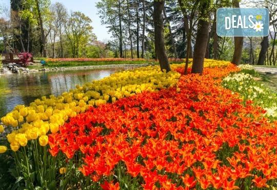 Пролетна ваканция в Истанбул по време на Фестивала на лалето! 2 нощувки със закуски в хотел 3*, транпорт и посещение на Одрин - Снимка 1