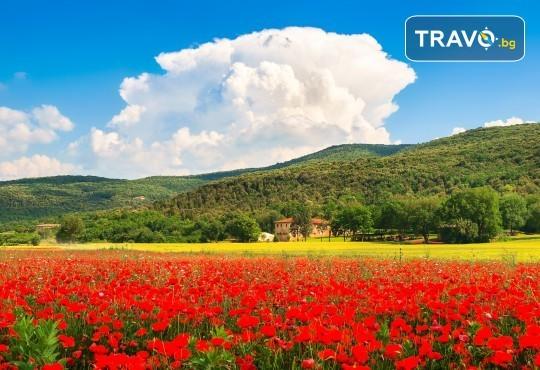 Романтика в Тоскана през май или септември! 5 нощувки със закуски, транспорт, билет за о. Елба и дегустация на вино в Монтепулчано - Снимка 3