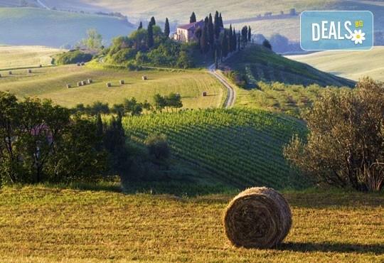 Романтика в Тоскана през май или септември! 5 нощувки със закуски, транспорт, билет за о. Елба и дегустация на вино в Монтепулчано - Снимка 5