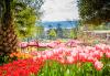 Супер цена за Фестивал на лалето през пролетта в Истанбул! 2 нощувки със закуски в Courtyard By Marriott Istanbul International Airport 4*, транспорт, ползване на басейн и сауна - thumb 3