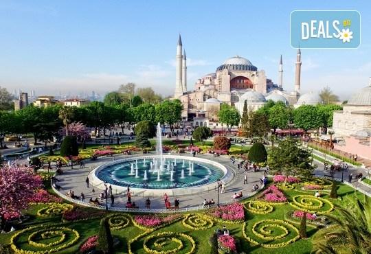 Супер цена за Фестивал на лалето през пролетта в Истанбул! 2 нощувки със закуски в Courtyard By Marriott Istanbul International Airport 4*, транспорт, ползване на басейн и сауна - Снимка 1