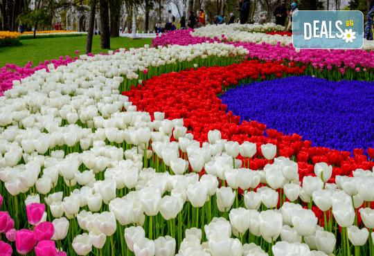 Фестивал на лалето през март или април в Истанбул! 2 нощувки със закуски в Golden Tulip Istanbul Bayrampasa 5*, транспорт и посещение на мол Forum - Снимка 2