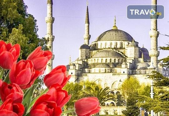 Фестивал на лалето в Истанбул! 2 нощувки със закуски в Golden Tulip Istanbul Bayrampasa 5*, транспорт от Варна и Бургас и трансфер до Емирган парк - Снимка 1