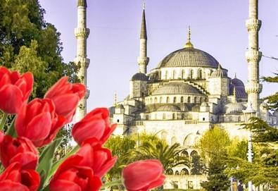 Фестивал на лалето в Истанбул! 2 нощувки със закуски в Golden Tulip Istanbul Bayrampasa 5*, транспорт от Варна и Бургас и трансфер до Емирган парк - Снимка
