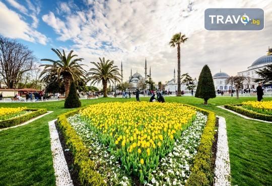 Фестивал на лалето в Истанбул! 2 нощувки със закуски в Golden Tulip Istanbul Bayrampasa 5*, транспорт от Варна и Бургас и трансфер до Емирган парк - Снимка 3