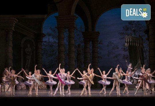 Ексклузивно в Кино Арена! Гледайте балета Спящата красавица, спектакъл на Кралската опера в Лондон, на 12, 14 и 16.02. в кината в София и страната - Снимка 4