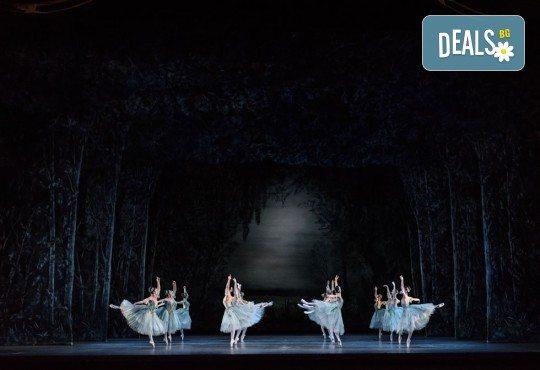 Ексклузивно в Кино Арена! Гледайте балета Спящата красавица, спектакъл на Кралската опера в Лондон, на 12, 14 и 16.02. в кината в София и страната - Снимка 6