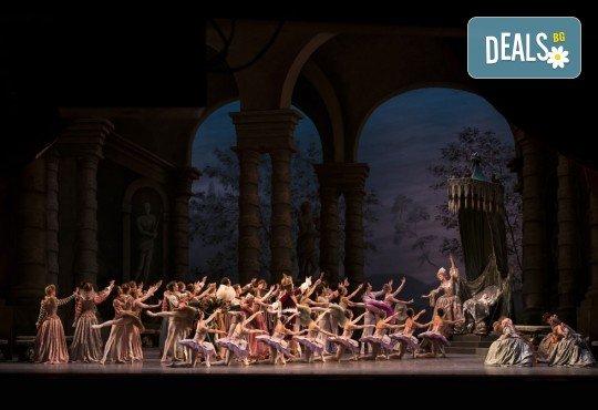 Ексклузивно в Кино Арена! Гледайте балета Спящата красавица, спектакъл на Кралската опера в Лондон, на 12, 14 и 16.02. в кината в София и страната - Снимка 3