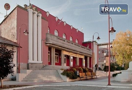 Уикенд за 1 март в Етно село Срна! 1 нощувка със закуска и празнична вечеря, транспорт, посещение на Пирот и Цариброд - Снимка 7
