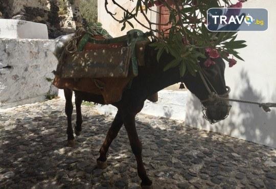 Посрещнете Великден на романтичния остров Санторини! 4 нощувки със закуски в хотел 3*, транспорт и водач от Данна Холидейз - Снимка 9
