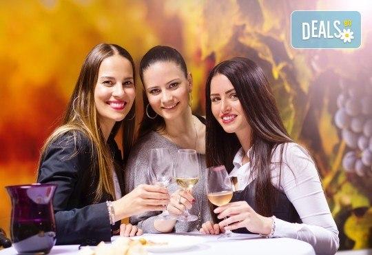 Отпразнувайте 8-ми март в Бела паланка в Сърбия! 1 нощувка със закуска и празнична вечеря с неограничени напитки и богато меню, транспорт и водач - Снимка 1