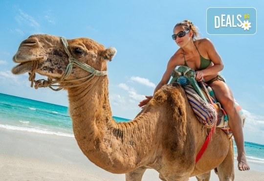 Ориенталска приказка в Тунис! 7 нощувки със 7 закуски, 7 вечери и 4 обяда, самолетен билет и чекиран багаж, богата програма с екскурзовод на български - Снимка 3