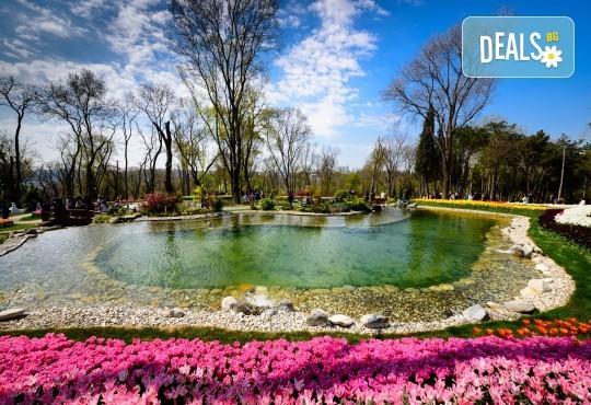 Фестивал на лалето в Истанбул: 2 нощувки и закуски в хотел 4*, транспорт и водач
