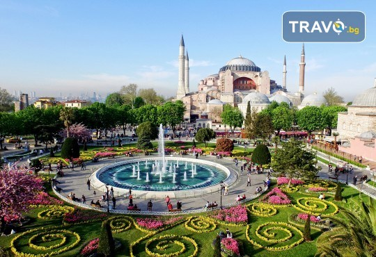 Фестивал на лалето през април в Истанбул! 2 нощувки със закуски в Courtyard By Marriott Istanbul International Airport 4*, транспорт, посещение на Принцовите острови - Снимка 1