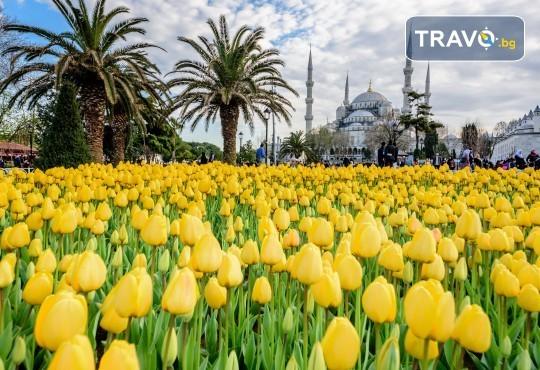 Фестивал на лалето през април в Истанбул! 2 нощувки със закуски в Golden Tulip Istanbul Bayrampasa 5*, транспорт, посещение на Принцови острови и трансфер до Емирган парк - Снимка 3