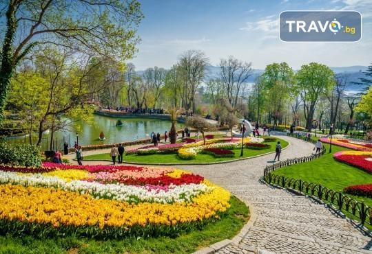 Фестивал на лалето през април в Истанбул! 2 нощувки със закуски в Golden Tulip Istanbul Bayrampasa 5*, транспорт, посещение на Принцови острови и трансфер до Емирган парк - Снимка 1