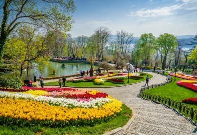 Фестивал на лалето през април в Истанбул! 2 нощувки със закуски в Golden Tulip Istanbul Bayrampasa 5*, транспорт, посещение на Принцови острови и трансфер до Емирган парк - Снимка