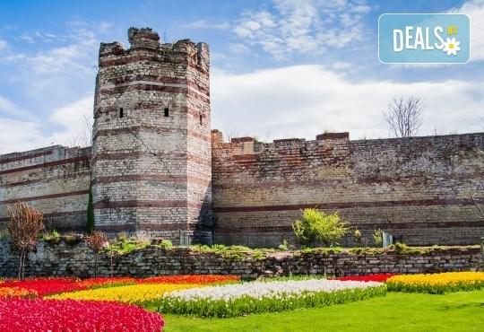 Фестивал на лалето в Истанбул: 2 нощувки, закуски в хотел 4*, транспорт от Варна и Бургас