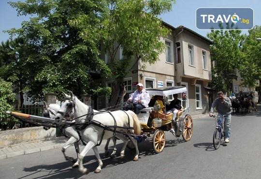 Фестивал на лалето в Истанбул! 2 нощувки със закуски в Park Inn By Radisson Istanbul 5*, транспорт от Варна и Бургас и посещение на Принцовите острови - Снимка 7