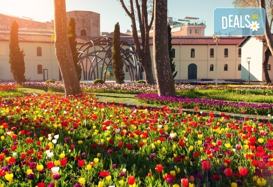 Фестивал на лалето в Истанбул! 2 нощувки със закуски в Park Inn By Radisson Istanbul 5*, транспорт от Варна и Бургас и посещение на Принцовите острови - Снимка 1