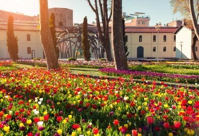 Фестивал на лалето в Истанбул! 2 нощувки със закуски в Park Inn By Radisson Istanbul 5*, транспорт от Варна и Бургас и посещение на Принцовите острови - Снимка