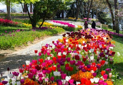 Пролетна екскурзия до Истанбул по време на Фестивала на лалето! 2 нощувки и закуски в Hotel Yaztur 3*, транспорт и посещение на Одрин - Снимка