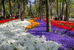 Фестивал на лалето в Истанбул през март или април! 2 нощувки и закуски в Buyuk Sahinler 4*, транспорт, водач и посещение на Одрин - Снимка