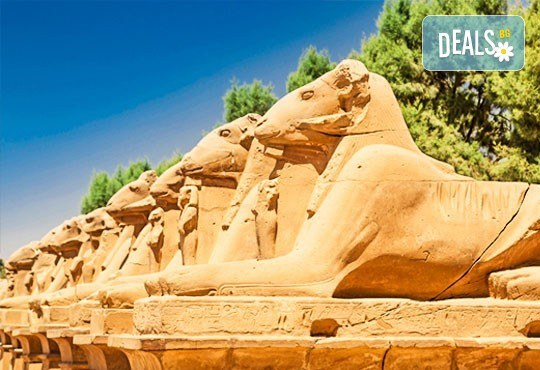Лукс почивка в перлата на Египет - Хургада! 7 нощувки на база All Inclusive, самолетни билети и трансфери - Снимка 11