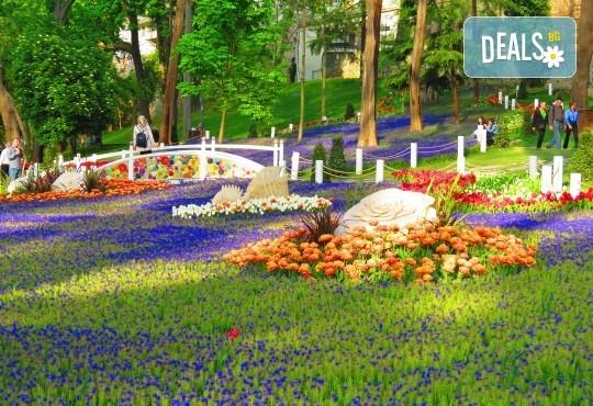 Фестивал на лалето в Истанбул с АБВ Травелс! 4 нощувки със закуски и транспорт, пешеходен тур, посещение на Емирган парк и престой в Одрин - Снимка 1