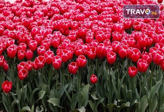 Екскурзия за Великден или през май до Истанбул с Еко Тур! 3 нощувки със закуски в хотел 3*, транспорт и екскурзовод - Снимка 2