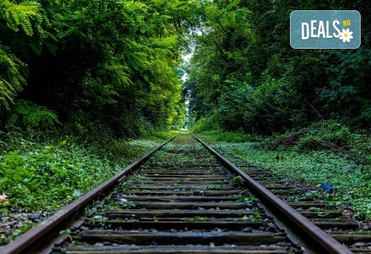 На разходка с родопска теснолинейка от Велинград до Разлог! Транспорт и екскурзовод от Глобул Турс - Снимка 2